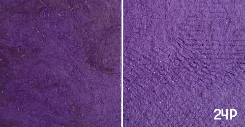"Color Swatch 24P – ""Violet"""