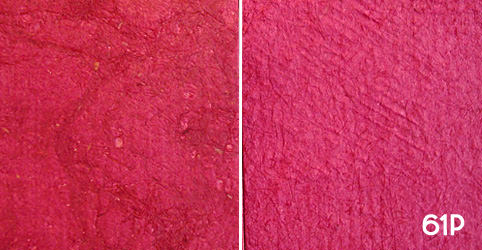 "Color Swatch 61P – ""Rosa"""